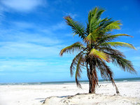 Bahia - Brazil 3