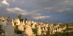 Cemetary In Romania 1