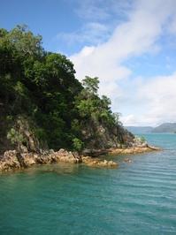 Rainforest island