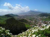 Berglandschaft - Mountain Landscape (Tenerife)