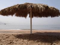 Red Sea Umbrella on Beach