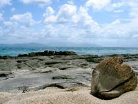 Stranded Coconut