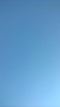 Clear blue sky 1