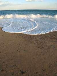 Beach Scene 20