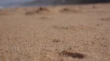 La Mercy Beach