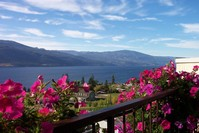 Blue Sky,Blue lake,red flowers