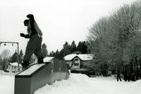 snowboardingII