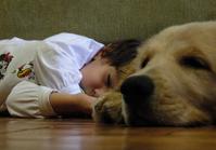 boy and dog sleep