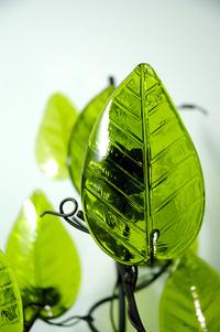 Glass Leaf 1