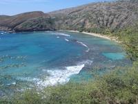 Hawaiian Scenes 1