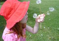 Dievčatko si želá - dievčatko v červenom klobúku fúka do troch bielych púpav
