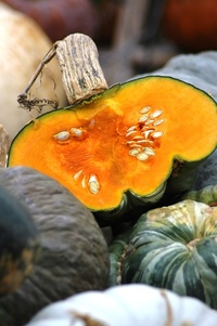 Pumkins, squashes & gourds 5