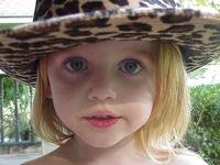 wild hat