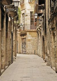 Calle peatonal 3