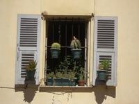 Window in Nice