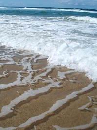gold coast 4