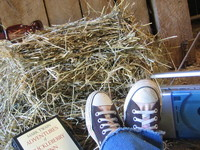 life at the barn