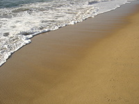 beach0 1