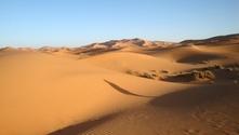 sand around