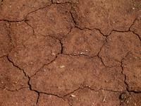Dry Australian soil