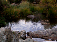 Mini Lake