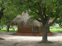 Zambian House