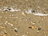 Low Tide on Beach