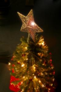 Gather 'Round the Christmas Tree