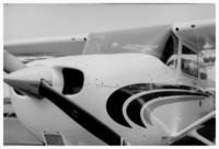 Trumpet Series - Flight
