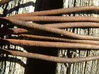 oldknots 4