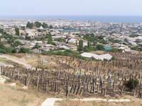 Islamic graveyard