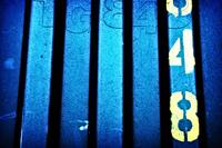 Striped 48
