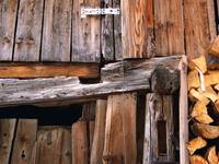 look on wood