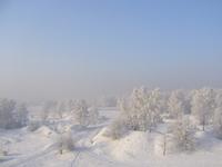 Wild Winter 9
