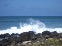 Hawaiian Scenes 3