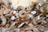 Shrimp ready to boil
