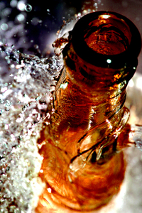 Bottles of Beer 29