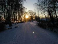 Winter Dawn 3