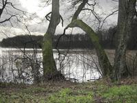 Lake Dlugie in Pomerania 03
