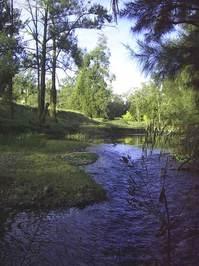 Dungowan River