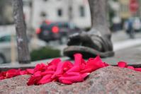 Flowers at Gandhi's Feet
