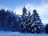 Winter in Poland 2