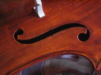 Cello Detail 2