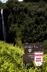 Akaka Falls 1