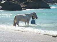 Praia Gravata. 5