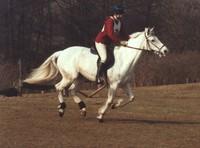 Equestrian Event 3