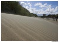 Shore dunes in the wind