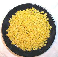 maize 01