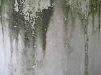 Dirty pilar