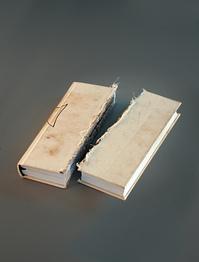 Sawn book